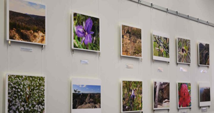 Natural landscapes exhibition